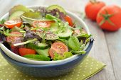 image of spring lambs  - Salad mix with arugula lettuce tomato cucumber and lamb - JPG