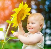 Smiling baby with sunflower on summer field