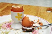 empty boiled egg shells on breakfast plate
