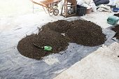 stock photo of excrement  - pile of natural manure fertilizer made from cow excrement - JPG