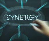 Synergy Diagram Means Joint Effort And Cooperation
