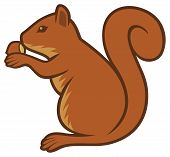 image of hazelnut  - squirrel with hazelnut vector illustration on white background - JPG