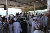 Daily Fish Market In Barka, Oman