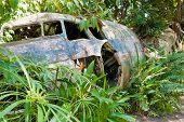 Abandoned Crashed Plane In Kuranda, Australia