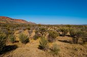 Macdonnell Ranges, Northern Territory, Australia