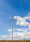 The Wind Turbines
