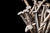The leadership concept - the new steel nail over group of old rust nails on a black background
