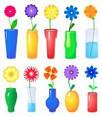 Flower in different vases vector set