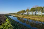 Canal in a rural landscape under a clear sky at fall
