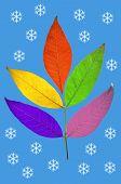 Christmas Leaves