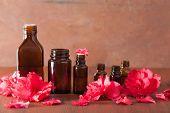 pic of azalea  - essential oil azalea flowers on rustic background - JPG