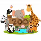 pic of zoo  - Illustrator of zoo animals cute funny cartoon - JPG