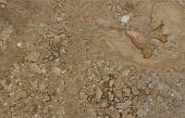 Surface Of The Travertine. Caramel Colour.