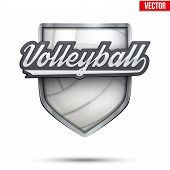 stock photo of volleyball  - Premium  symbol of Volleyball label - JPG