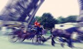 picture of carriage horse  - Abstract background - JPG