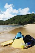 Vacation Island  Beach Snorkle