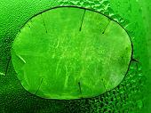Leaf Of The Lunik
