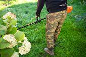Gardener Mows Grass With Lawnmower Trimmer. Man In Garden poster
