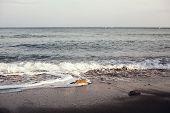 Seascape, Sea Waves, Baltic Sea, Storm Seascape poster