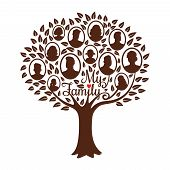 Genealogy Tree. Genealogical Family Tree Vector Illustration, Vintage Dynasty Ancestry Drawing Silho poster