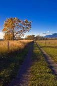 Autumn Rural Road In Boulder Colorado