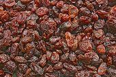 Dry thompson Seedless Raisin background