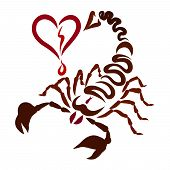 The Sting Of A Scorpion Comes Right Into The Heart, Feelings And Health poster