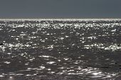 sunlight sparkles on quicksilver-like atlantic ocean, France