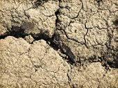 Global warming - parched earth