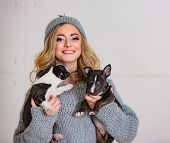 A Happy Beautiful Girl Hugging Little Puppies. Two Funny Little Bull Terriers In The Hands Of A Nice poster