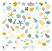 Vector Hand Drawn Set Of Sea Shells And Stars. Isolated Individual Objects. Clipart For Greeting Car poster
