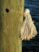 Stock Photo Of Pier Piling And Rope Bitter End