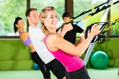 image of suspension  - Group of people exercising with suspension trainer in fitness club or gym - JPG