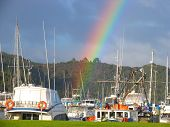 Rainbow And Harbor In New Zealand