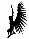 3D Dark Angel.