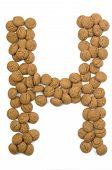 Ginger Nut Alphabet H