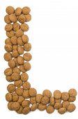 Ginger Nut Alphabet L