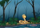 picture of jungle snake  - Illustration of a snake near the pond - JPG