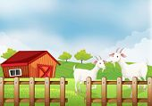Illustration of the two white goats at the farm