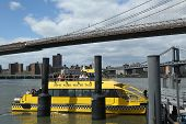New York City Water Taxi at Fulton Ferry  Landing