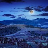 stock photo of coniferous forest  - mountain steep with coniferous forest in moon light at midnight - JPG