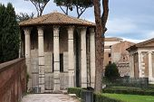 stock photo of hercules  - the temple of Hercules aka Vesta in Rome Italy