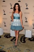 Caterina Scorsone at the 4th Annual Television Academy Honors, Beverly Hills Hotel, Beverly Hills, C