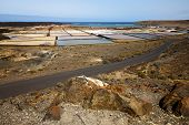 Salt In  Lanzarote Spain