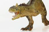 pic of flesh  - A Flesh Eating Carnotaurus Dinosaur Whose Name Means Meat Eating Bull - JPG
