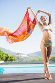 Beautiful brunette in bikini holding sarong up on a sunny day