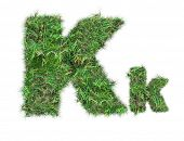 Letter K On Green Grass Isolated