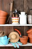 Closeup of items on the shelves of a potting shed. The rustic interior is full of flower pots, and o