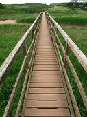 Rural Bridge Landscape