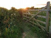 Sunlit Rural Gateway